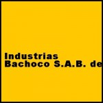 Industrias Bachoco S.a.B. de C.V. – Investment Analysis